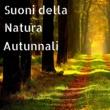 Natura Armonia Suoni della Natura Autunnali