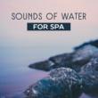 Calming Sounds Ocean Bliss