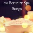 Wellness N Wellness 20 Serenity Spa Songs