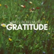 Shades of Wellness Gratitude