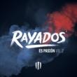 Mister Chivo Rayados Nomás