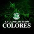 Los Del Sur La Gloria de Estos Colores