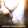 Nature Sound Series Soothing Nature Sounds