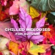 Acoustic Chill Out Chilled Melodies for Autumn