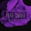 Pure Corda Come Out