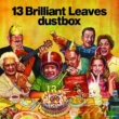 dustbox 13 Brilliant Leaves