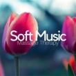 Calm Water Maestro Soft Music