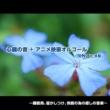 浜崎 vs 浜崎 小さな世界 (心音入りオルゴールバージョン)