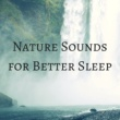 Soothing Music Experience Nature Sounds for Better Sleep