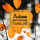 Lounge relax Autumn Sounds to Relax