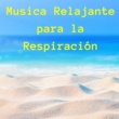 Bienestar Maestro Musica Relajante para la Respiración