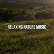Best Relaxation Music Positive Natural Vibes