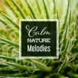 Sounds of Nature Soothing Nature Sounds