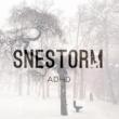 ADHD Snestorm