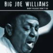 Big Joe Williams Bye Bye Baby Blues