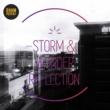 Storm & Wonder Reflection