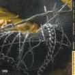 ポスト・マローン/ニッキー・ジャム/オズナ rockstar (feat.ニッキー・ジャム/オズナ) [Remix]