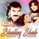 Ghulam Abbas Bhulley Shah (Pakistani Film Soundtrack)