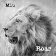 M1u Lions