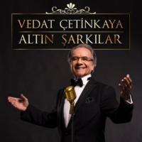 Vedat Çetinkaya Kız Sen İstanbul'un Neresindensin [Instrumental]