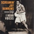 Screamin' Jay Hawkins I Hear Voices