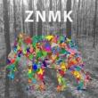 Bunny House&ZNMK Electric Lady
