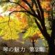 山内喜美子 琴の魅力 2