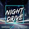 Robbie Rivera The Ultimate Disco Groove (StoneBridge Mix)