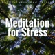 Dr. Sakano Meditation for Stress: Mindfulness Meditation, Soothing Songs, Stress Management, Positive Thinking