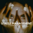 Lullaby Academy Masters Stress Management
