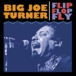Big Joe Turner When The Sun Goes Down