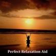 Mindfullness Meditation World Light Rain on a Tin Roof