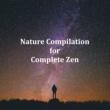 Zen Music Garden Meditation Sounds