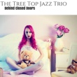 The Tree Top Jazz Trio Lock Me In
