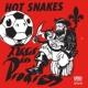 Hot Snakes Audit in Progress