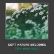 Nature Sound Collection Calm Waves
