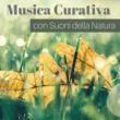 Acqua Curativa Musica Curativa con Suoni della Natura
