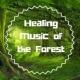 Healing Music Spirit Just in Time