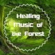 Healing Music Spirit Healing Music of the Forest - Sounds of Nature
