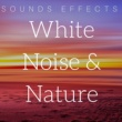 Sounds of Nature White Noise for Mindfulness Meditation and Relaxation White Noise & Nature