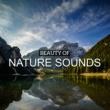 Nature Sounds Relaxation Massage