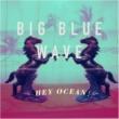 Hey Ocean! Big Blue Wave