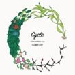 COMA-CHI Cycle