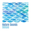 Nature Sound Collection Positive Natural Vibes