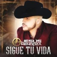 Jesús Mendoza Sigue Tu Vida
