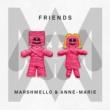 Marshmello & Anne-Marie FRIENDS