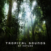 Echoes of Nature Tropical Sounds of Nature
