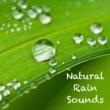 Sleep Sounds of Nature White Noise Baby Sleep Aid