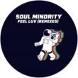 Soul Minority