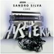 Sandro Silva Core